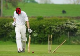 cricket-724616_1920