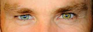 warne eyes